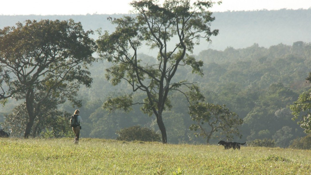 Mason at work in pasture next to cerrado forest