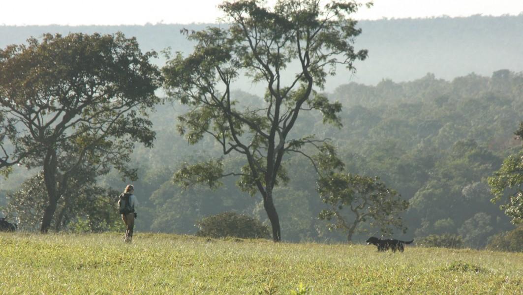 Mason at work in pasture next to cerrado forest