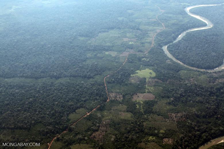Deforestation along the Peru, Brazil border