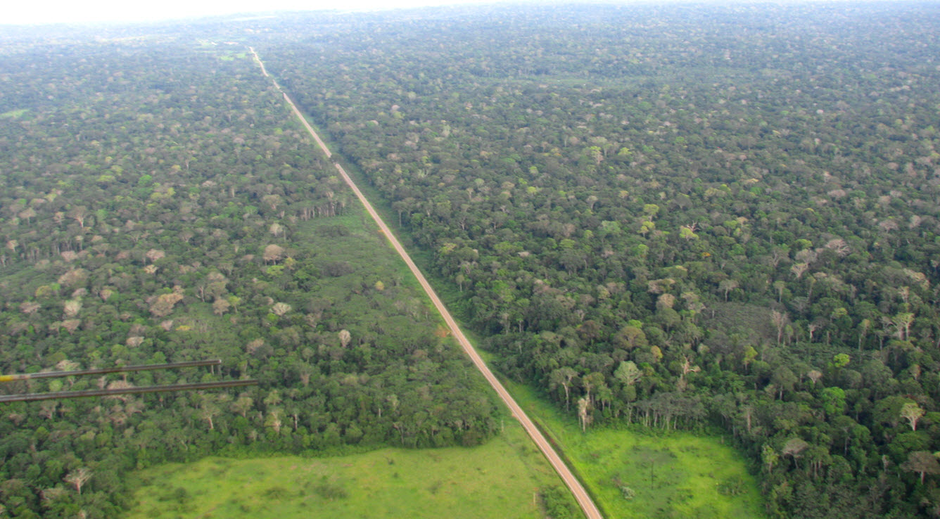 A road divides tropical rain forest in Peru.