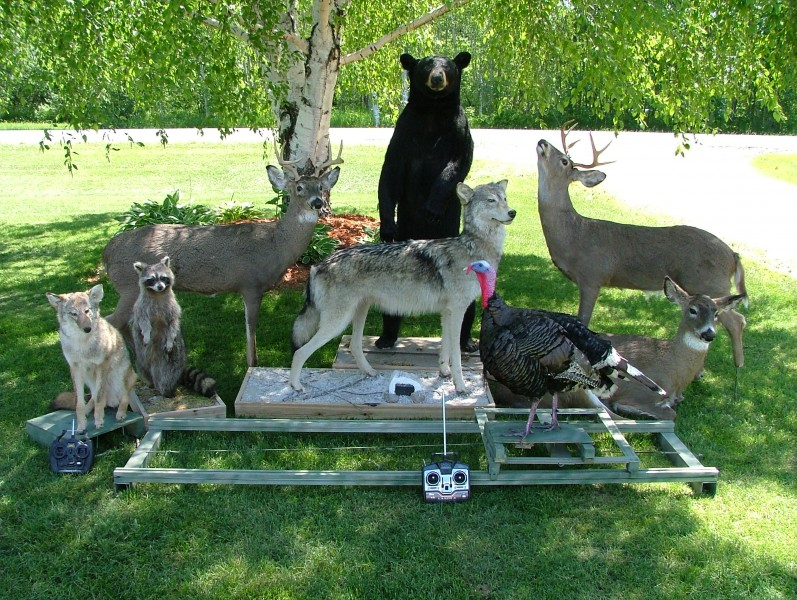Remote-controlled robotic decoys of a fox, raccoon, deer, wolf, bear and turkey. Photo credit: CRW, Inc.