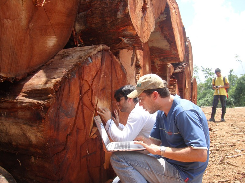 Fieldwork team preparing wood surface and taking NIRS spectra of big-leaf mahogany in Acre, Brazil. Photo credit: Project NIRS ID.