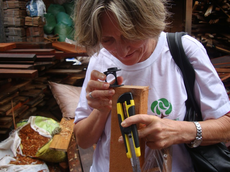 Wood anatomist Vera Coradin identifying lumber before the NIRS measurement is taken at a sawmill in Brasilia, Brazil. Photo credit: Project NIRS ID.