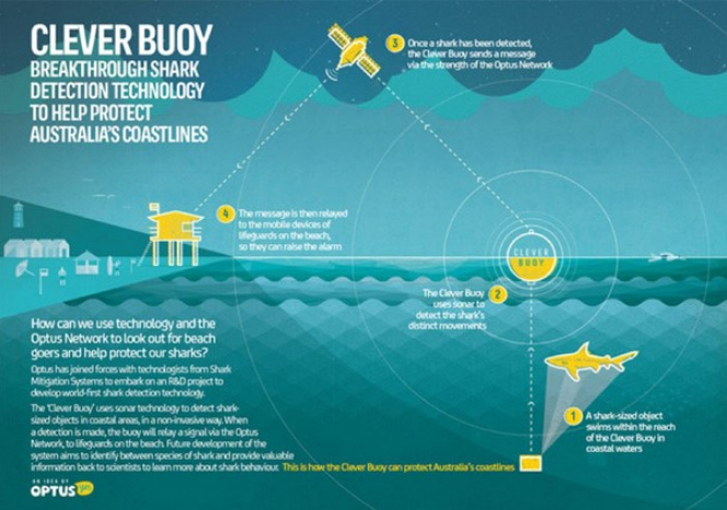 5 Tech Projects That Are Protecting Sharks