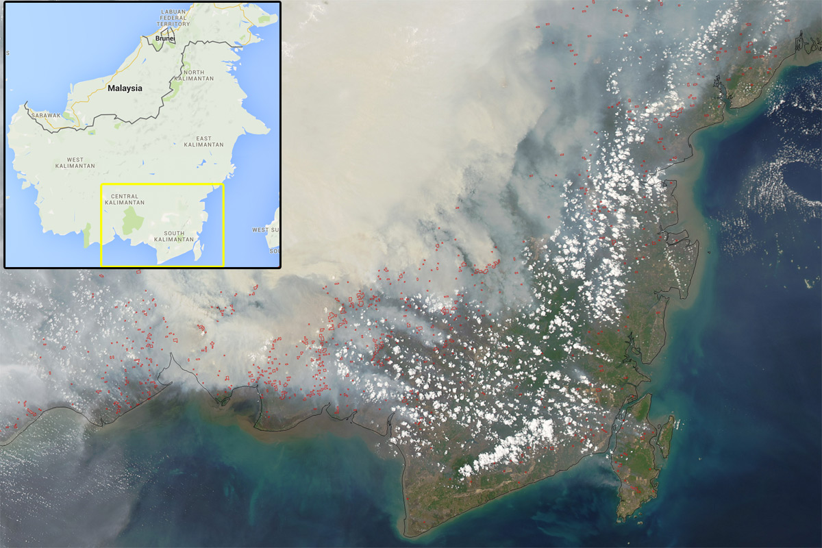 Heavy smoke continued to pour from peat fires in Borneo, Indonesia, when the Moderate Resolution Imaging Spectroradiometer (MODIS) on NASA's Aqua satellite captured this image on October 19, 2015. Red outlines indicate hot spots where the sensor detected unusually warm surface temperatures associated with fires. Gray smoke hovers over the island and has triggered air quality alerts and health warnings in Indonesia and neighboring countries. NASA image Jeff Schmaltz (LANCE MODIS Rapid Response) and Adam Voiland (NASA Earth Observatory). Caption by Adam Voiland.