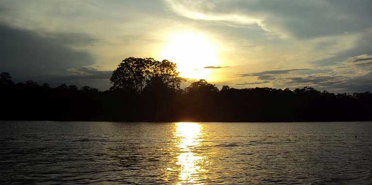 A free flowing Amazon river system will help guarantee the well-being of the region's aquatic wildlife and the stability of freshwater commercial fisheries. Photo by Peter Angritt licensed under the Creative Commons Attribution-Share Alike 4.0 International license.