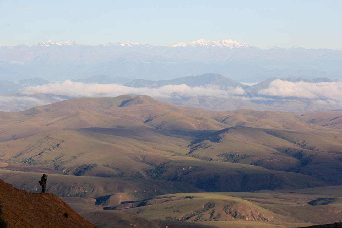 As we walked up the small mountains and to the north, the landscape grew more dramatic, revealing snowcapped Andes to the south. Photo by Morgan Erickson-Davis.