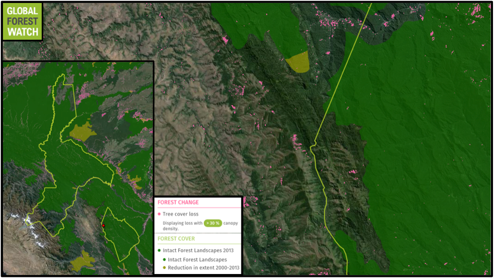 Identidad Madidi's first site - indicated by a red dot -  was in one of the few areas of the park without Intact Forest Landscapes.