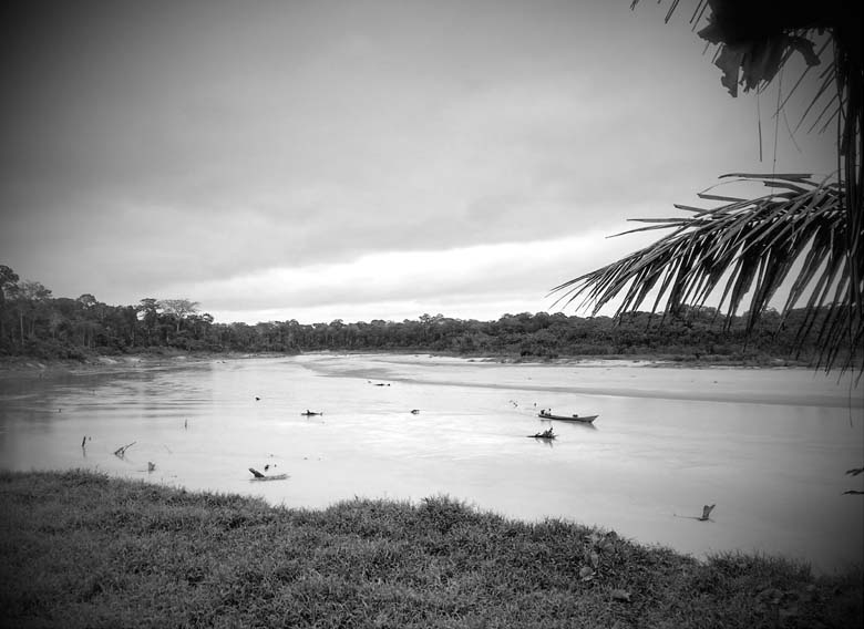 Morning on the Malinowski River, by the APAYLOM mining settlement. The forest in the background is part of the Tambopata National Reserve, currently under threat from illegal mining. Photo Credit: Saul Elbein