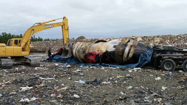 A flatbed truck delivers Piper's carcass to a landfill inland from Newport, Quebec. Photo credit: Jean Francois Blouin, Canadian Whale Institute.