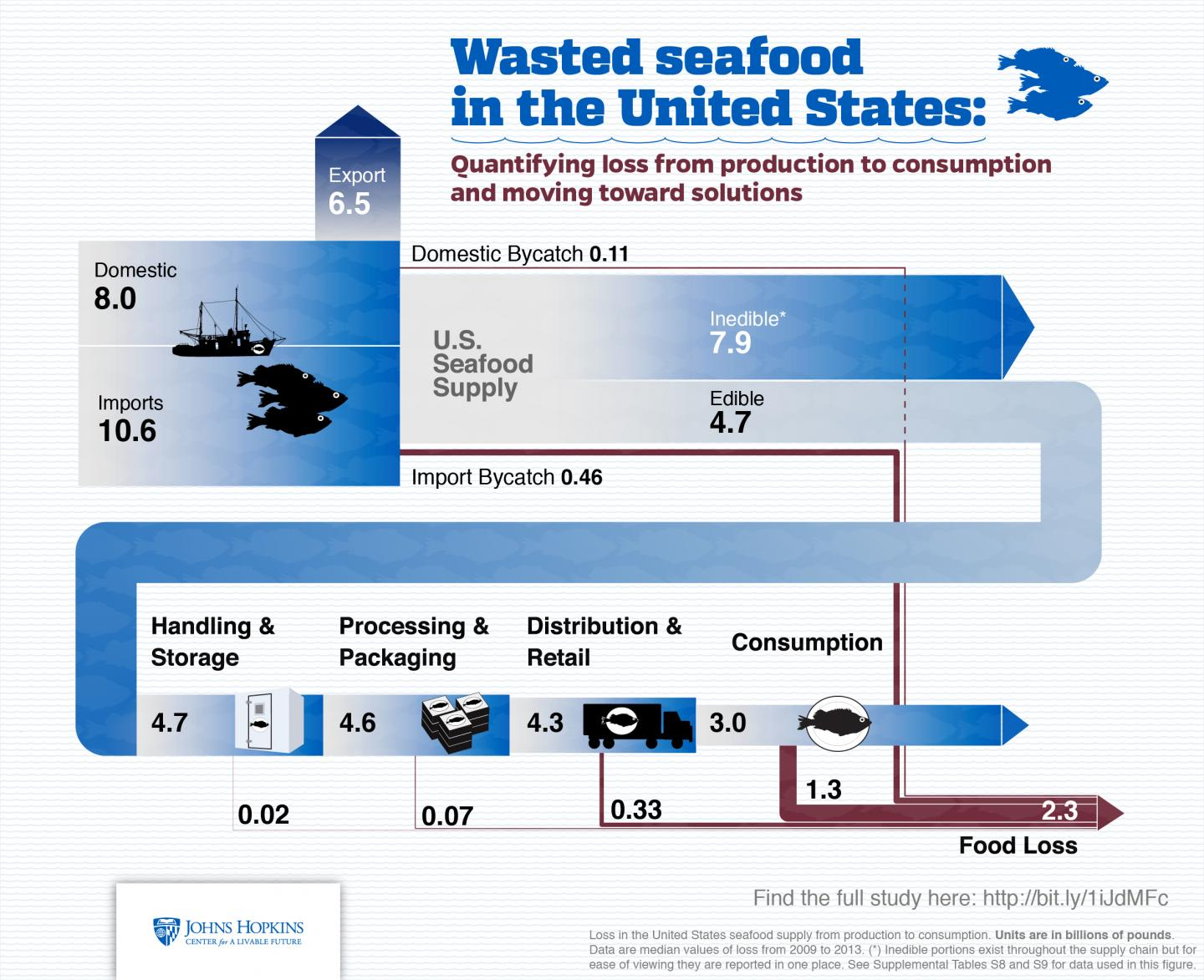 Graphic shows how seafood is wasted in the U.S. food supply chain, according to new research. Units are in billions of pounds. Graphic by Johns Hopkins Center for a Livable Future.