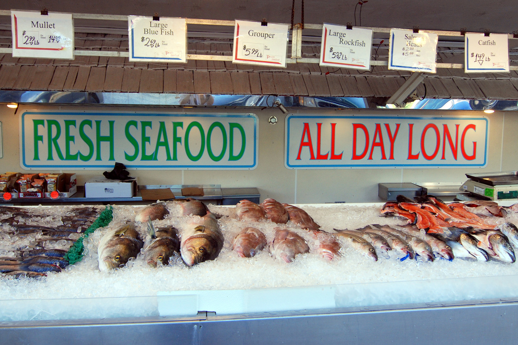 A U.S. fish market. Photo by Kevin Harber via Flickr.