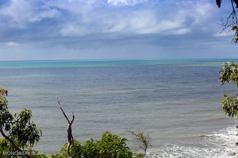 View of the ocean off Far Northeastern Queensland. Photo by Rhett Butler.