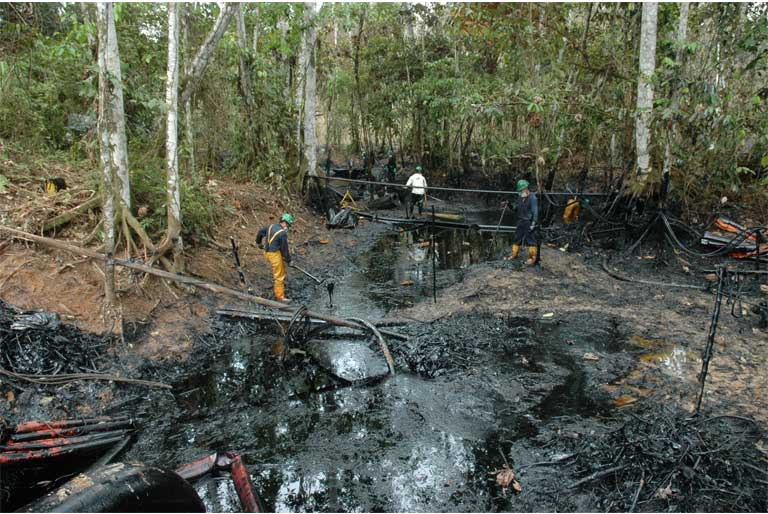 Oil roads are followed by oil wells and oil pipelines, and then often by oil spills. In remote areas around the world, oil spills such as this one in the heart of Yasuni Nationa Park, are common but they rarely receive any attention from the media. These events degrade the environment and diminish wildlife. Photo by Kelly Swing