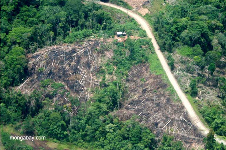 Settlements and deforestation along a road in the Napo River in the Ecuadorian Amazon. Photo by Jeremy Hance