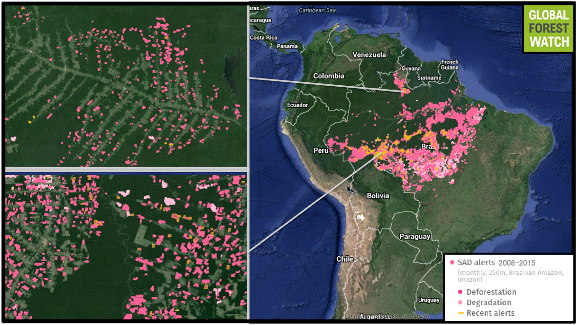 The Deforestation Alert System (Sistema de Alerta de Desmatamento—SAD) monitors forest cover loss and forest degradation primarily in the Brazilian Amazon. The system generates information that is published monthly by Imazon, a Brazilian NGO. Global Forest Watch shows SAD recorded deforestation alerts affecting 1.4 million hectares and degradation alerts for 1.7 million hectares from January 2008 to July 2015, primarily in the country's southern portion.