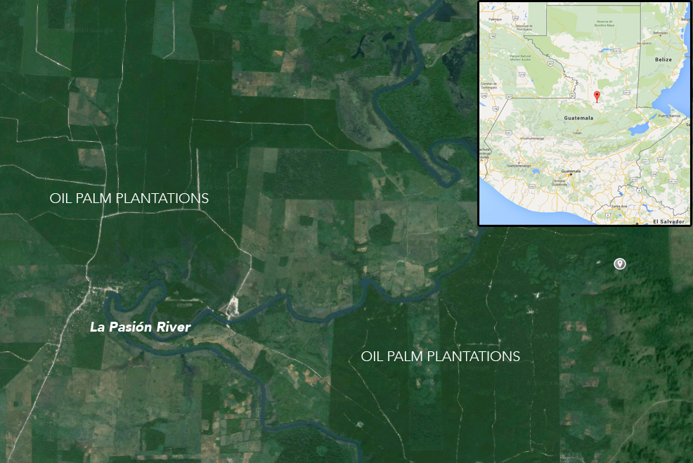 Google Earth image showing locations of oil palm plantations along the La Pasión River in Guatemala. Background image courtesy of Google Earth.