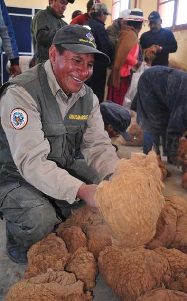 Community members clean vicuña fleeces. Photo by Daniel Maydana