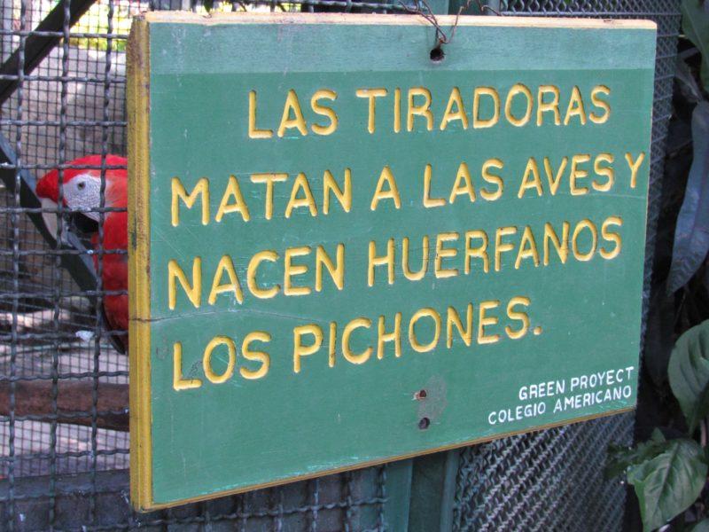 """""""Las tiradoras matan a las aves y nacen huérfanos los pichones"""" -- anuncio en el Zoológico Nacional de Nicaragua. Foto de Carlos Chávez."""