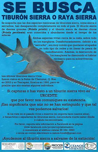 1-poster-sierra