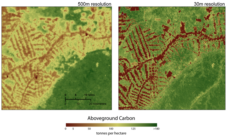 Comparison of 500 meter and 30 meter satellite image resolution. Courtesy of Woods Hole Research Center