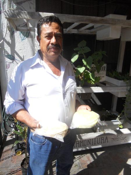 Las tortillas de maíz blanco o azul que produce Ezequiel Macías se venden en mercados agroecológicos en la Zona Metropolitana de Guadalajara. Foto de Pablo Hernández Mares.