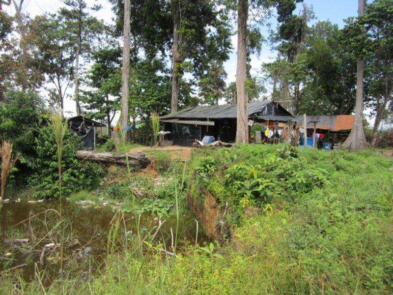 Una casa de mineros muy cerca de un criadero artificial de mosquitos a partir de una fosa ya abandonada. Foto de Ana Gisela Pérez.