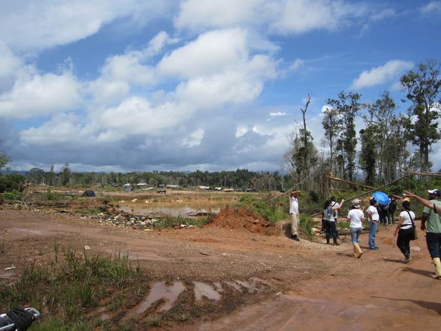 Las antiguas concesiones mineras usaban entre 2 a 5 hectáreas con reforestación de taludes, lo que ha cambiado drásticamente con los mineros artesanales ilegales. Foto de Ana Gisela Pérez.