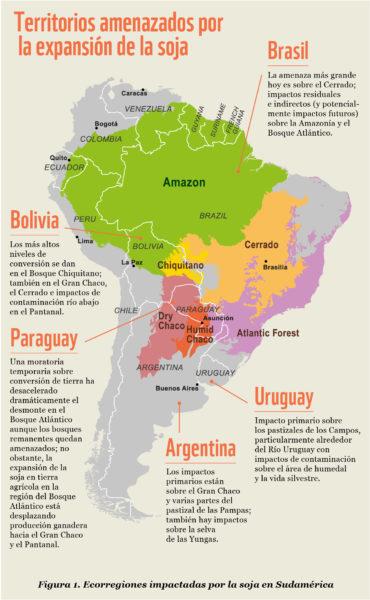 Ecorregiones en América del Sur impactadas por la siembra de soja. Mapa cortesía de WWF.