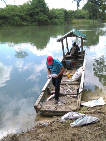 Pescadores recolectando peces muertos para tratar de averiguar qué sucedía. Foto cortesía de Evaristo Carmenate.