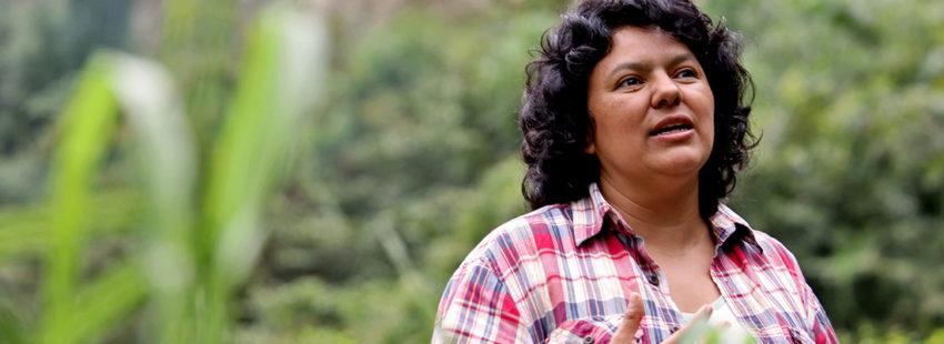 Las guardianas del ambiente: 5 historias de mujeres que dan su vida por el planeta y su familia