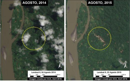 En las imágenes satelitales se observa el comienzo de la minería ilegal en agosto de 2014 y su evolución en un año. (Imagen de ACA/MAAP/2016).