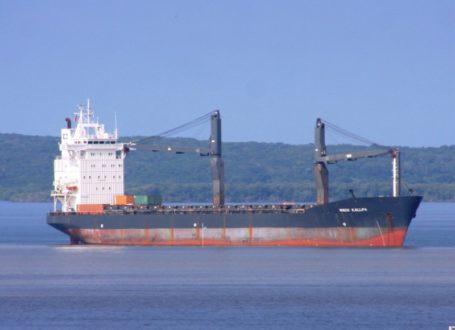 Esta la imagen del buque Yacu Kallpa que ha transportado madera ilegal según el Gobierno peruano. Fotografía: Ojo Público/MarineTraffic