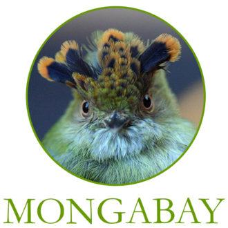 MONGABAY_sq-logo_3924_green_1024x1024