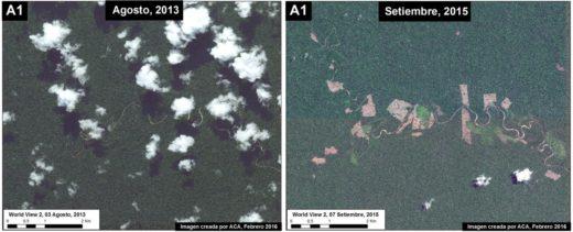 La deforestación se dio desde el 2013 y se ha ido incrementando. Imagen: MAAP/ACA/ WorldView-2 de Digital Globe (NextView)