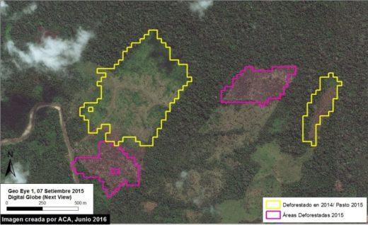 La deforestación en la región de Huánuco se desarrolla desde hace dos años.Imagen: MAAP/Digital Globe (NextView).