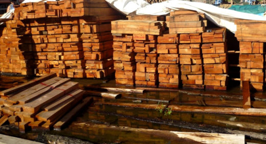 Luego de ser extraída en los bosques, la madera es procesada en los aserraderos para continuar la ruta hasta el puerto del Callao. Foto: Andina.