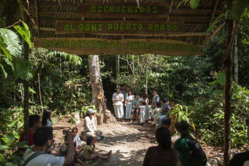 Bosque de los Niños (BONI). Fotografía de Adrián Portugal.