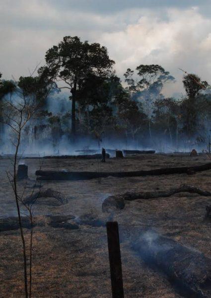 Quemas registradas en Pando, en el norte amazónico de Bolivia. Foto cortesía de Juan Fernando Reyes.
