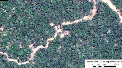 La deforestación causada por la construcción de carreteras en Ucayali inició en 2015. Imagen y datos: MAAP/WorldView-2 de Digital Globe (NextView).