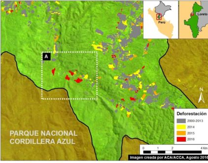 El área roja también es el área deforestada en la zona de amortiguamiento. Imagen y datos: MAAP/UMD/GLAD, Hansen/UMD/Google/USGS/NASA, MINAGRI