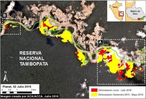 Los colores demuestran el nivel de avance de la deforestación en la Reserva amazónica. Imagen de MAAP.
