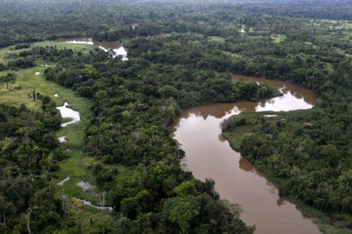 Vista panorámica de parte de la Amazonía boliviana. Foto cortesía de Los Tiempos.