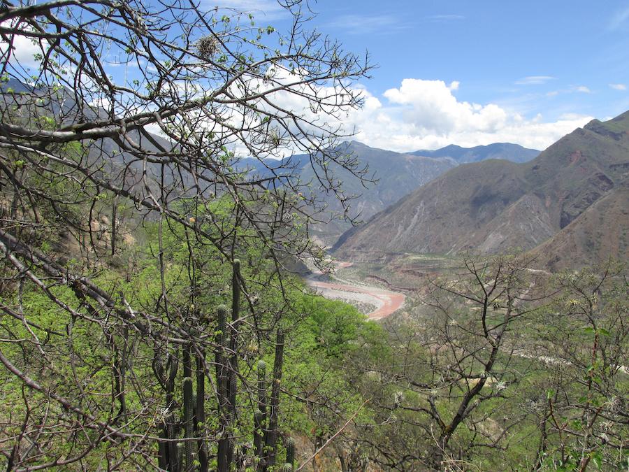 Bosques secos ubicados alrededor del río Pampas, Apurímac. Foto: Reynaldo Linares.