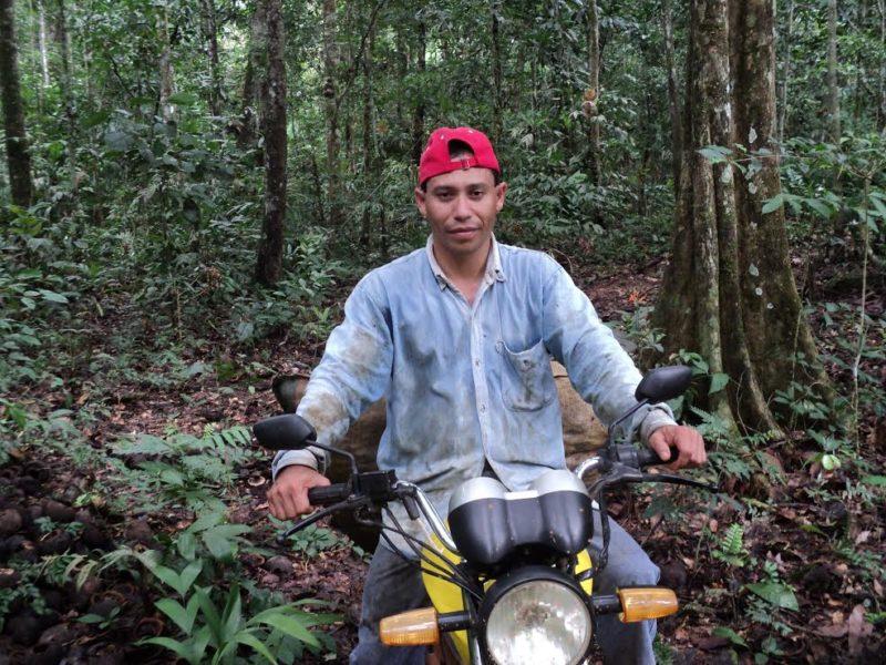 Manuel Salvatierra extrae a castaña dentro de la Reserva Nacional de Vida Silvestre Amazónica Manuripi. Foto: Manuel Salvatierra.