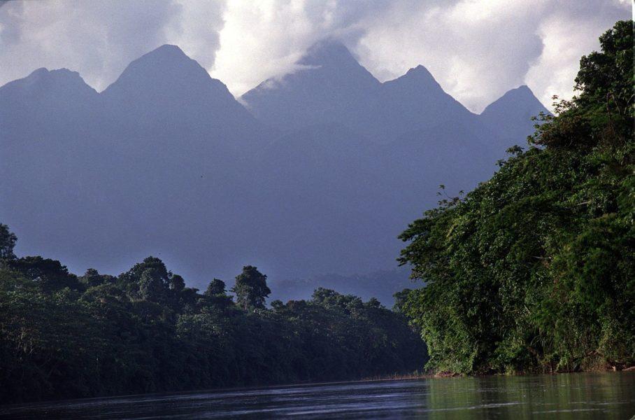 Parque Nacional Cordillera Azul. Fotografía de Andina.