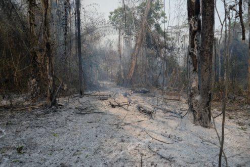 El suelo muestra las huellas de un desastre evidente. Foto de la Municipalidad distrital de Río Tambo.