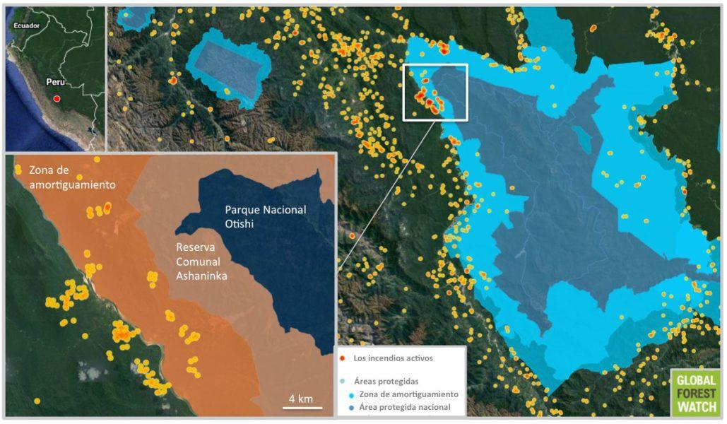 Los datos de la NASA visualizados en Global Forest Watch muestran los incendios que se acercan a la Reserva Comunal Asháninka y el Parque Nacional Otishi. Los incendios mostrados ocurrieron durante la semana (del 8 al 15 de setiembre. Los más cercanos a la reserva se han producido en tan sólo las últimas 24 horas.