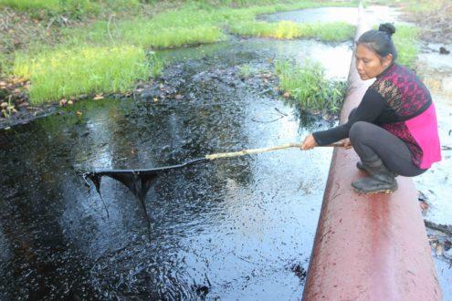 Aceite gotea de un palo sostenido por Sonia Caritimari Huansi en el lugar de un derrame de petróleo producido el 21 de agosto en la comunidad de Nueva Alianza (parte baja del valle del Marañón en la Amazonía peruana). Foto de Barbara Fraser.