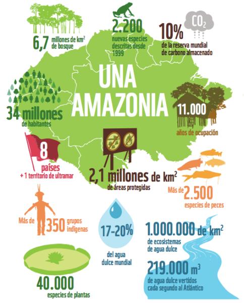 Infografía que demuestra la importancia de la Amazonía en cifras. Gráfico: Informe Amazonía Viva 2016/ WWF.